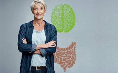 Der Darm, unser 2. Gehirn