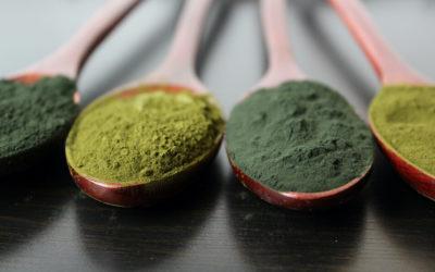 Power-Algen Chlorella und Spirulina: Diese 4 Fakten sollten Sie kennen